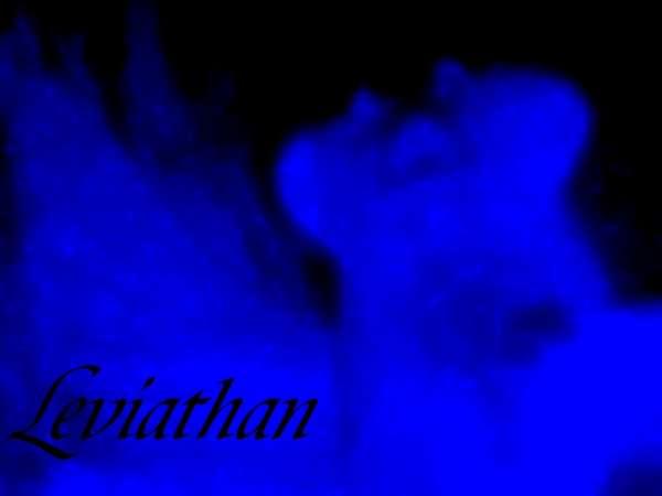 Leviathan fish