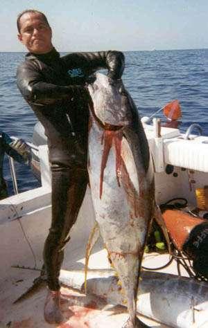 Roberto reyes, tuna fish