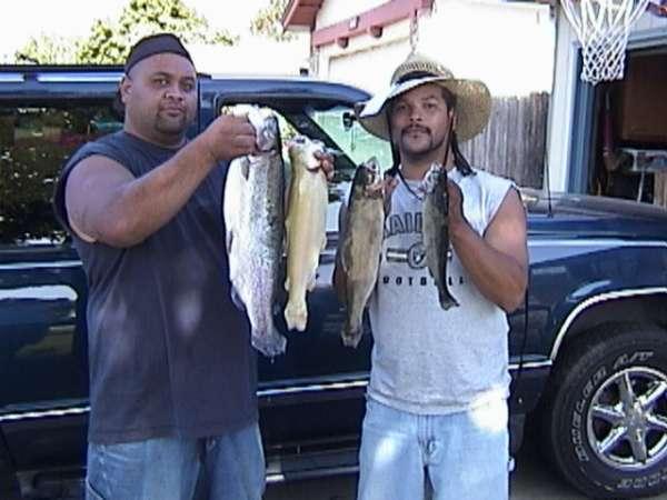 trophy trout fish