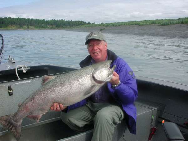 fresh Kenai King Salmon fish