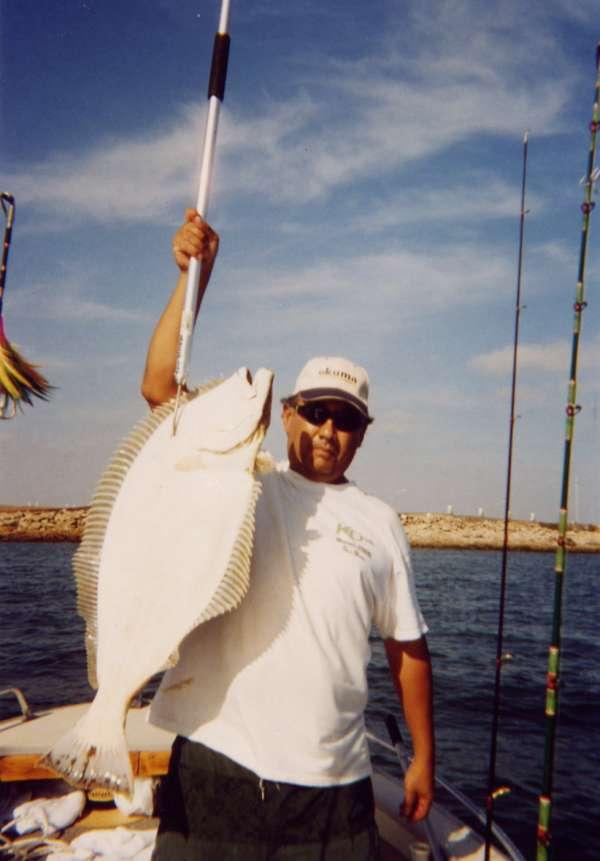 20 lbs Halibut fish