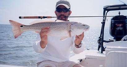 Nice red fish