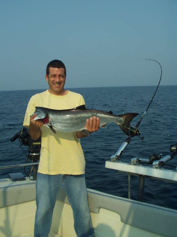 Lake Michigan King Salmon fish