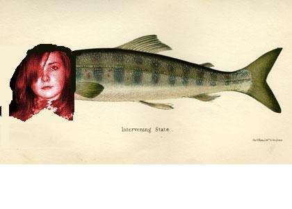 viv fish