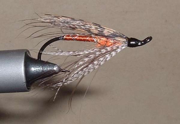 Spey Fly fish