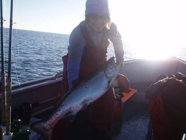 Langara Spring Salmon fish