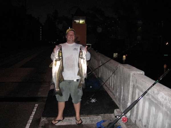 snook limit fish