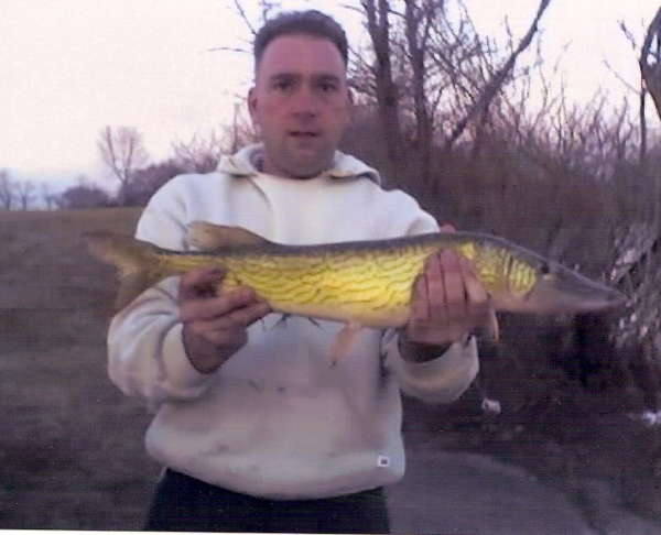 5lb pickerel fish