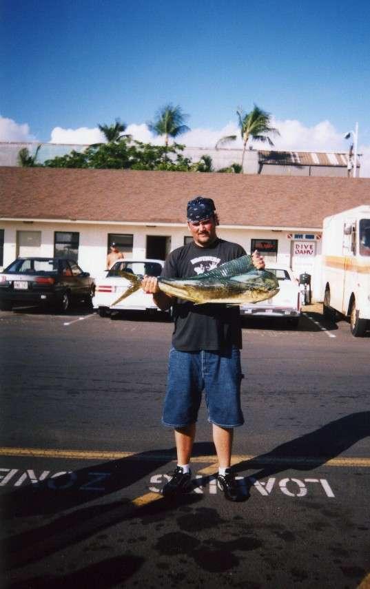 HAWAII MAHI MAHI fish
