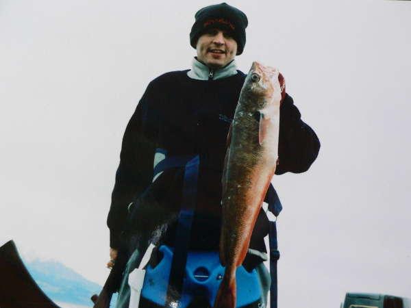 red cod fish