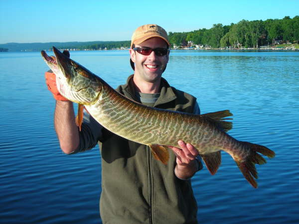 NY state Tiger Musky fish