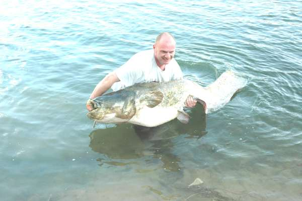 Carl fished with Ebro Cat N Carp Crunchers fish
