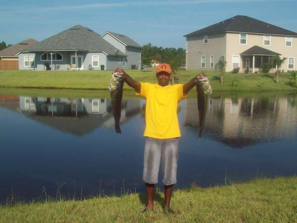 backyard bassin fish rate my fish fish and fishing pictures