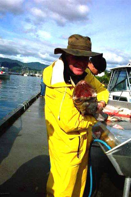 Ling Cod fish