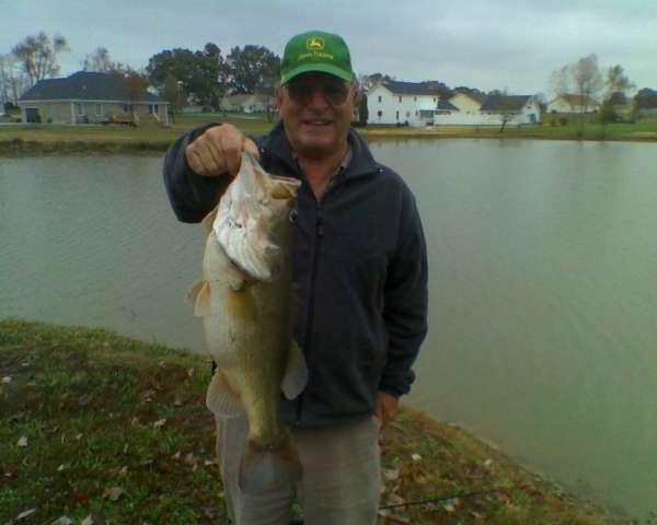 Bluegrass Largemouth fish