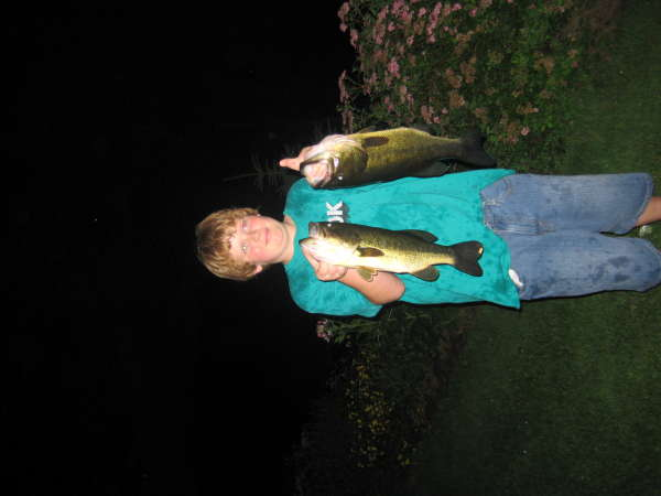 nice bass fish
