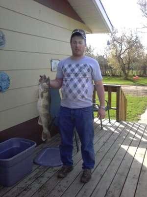 10 LBS Walleye fish