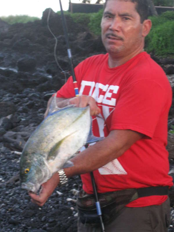 everyday catch in hawaii fish
