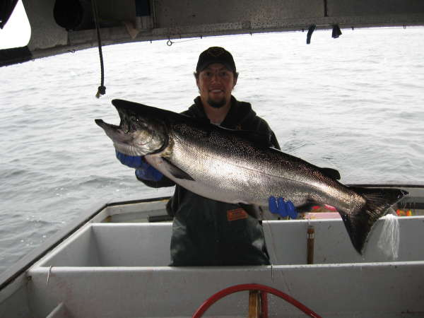 30 king sitka ak fish rate my fish fish and fishing for Sitka fishing report
