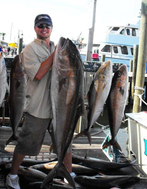80 Pound Amberjack fish