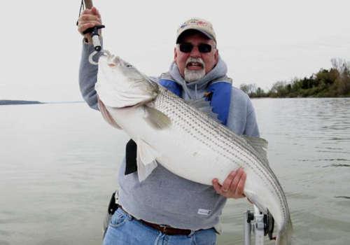 Potomac River Just Out of Washington fish
