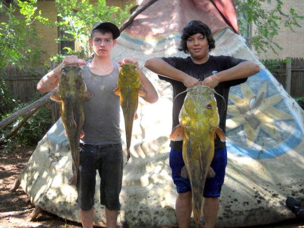 Nice flathead's fish