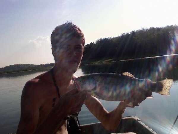 nice pa trout fish