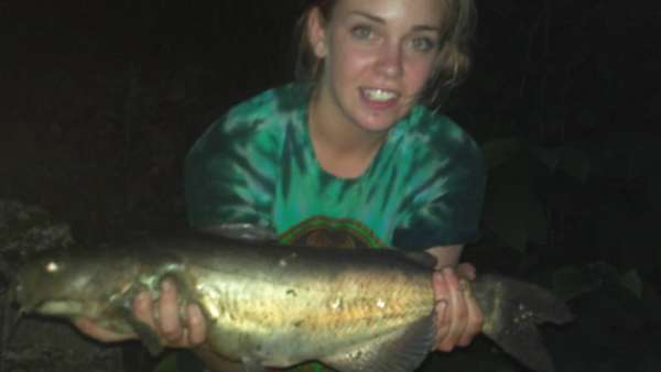 catfish fish