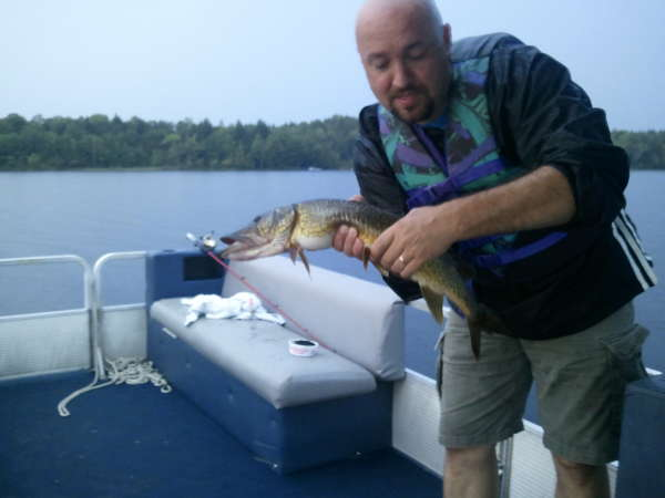 Chain Pickerel (or Pike???) fish
