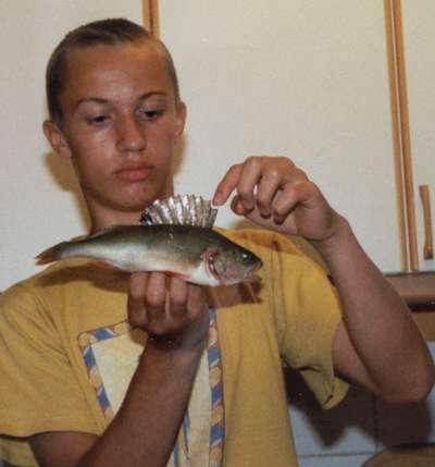 perch... fish