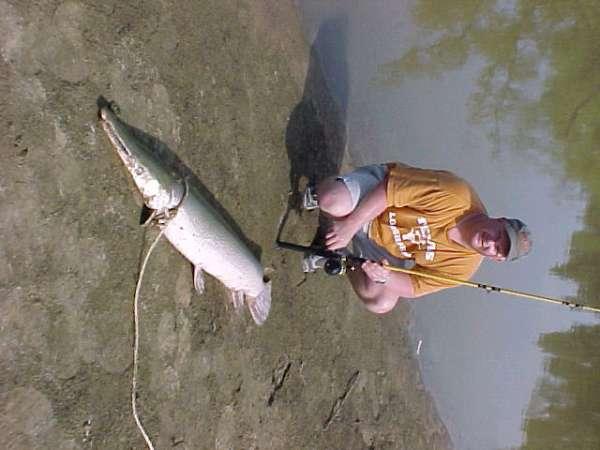 Northeast Texas Ocean Fish fish