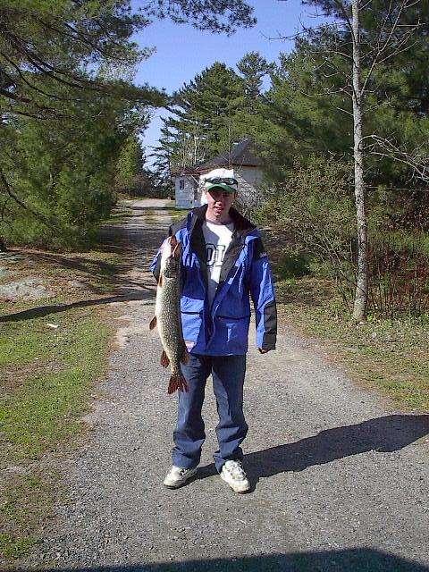 my buddys northern pike fish
