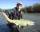Dustin fish