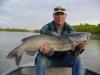 "37""/26 lb. channel cat fish"