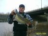 Ohio Wally fish