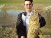 carps on the red fish