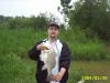freshwater drum fish