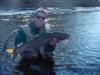 cold water, cool steelhead! fish