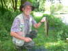 River Test Brown Trout fish