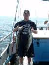 2 pollock fish