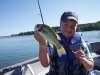 scugog largemouth fish