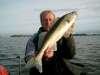 snoekbaars on saltshaker fish