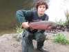coho salmon fish
