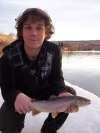 little brown fish