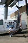 750 LB MAKO fish