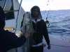 stripe bass fish