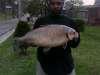 bf fish