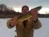 feb 09 fish