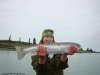kick ass stealhead trout fish