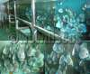 Best Seller Blue Diamond fish